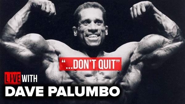 DAVE PALUMBOS 1 ADVICE