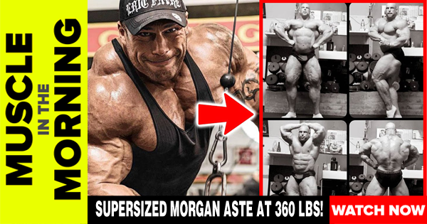 SUPERSIZED MORGAN ASTE AT 360 LBS