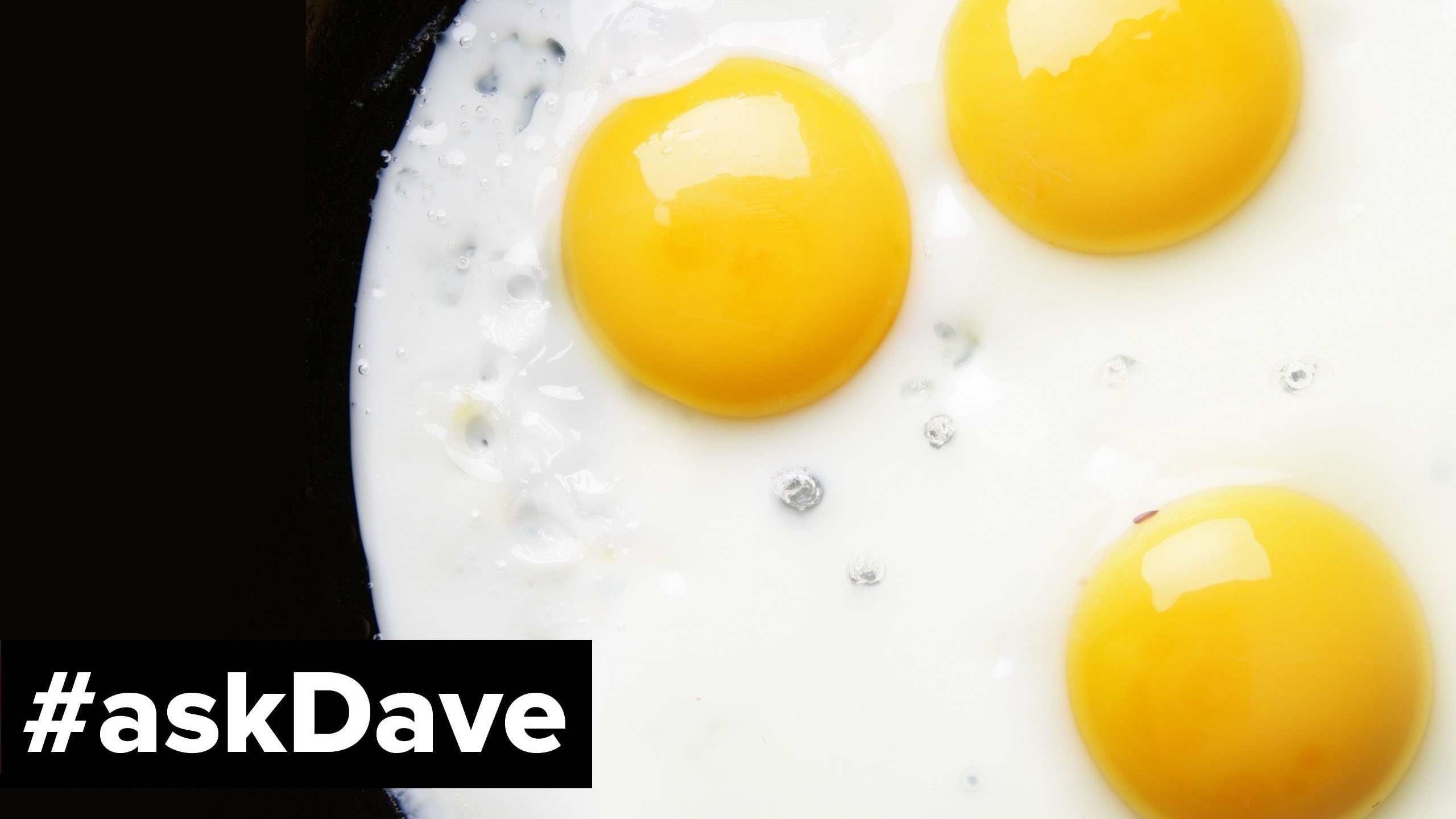 36 eggs a day ask dave