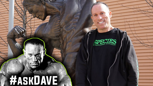 DAVE PALUMBO HOW ILL BEAT CANCER