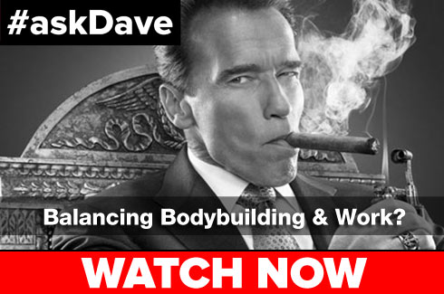 askdave bodybuilding work