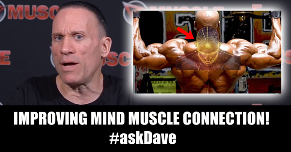 mind muscle connection ask dave