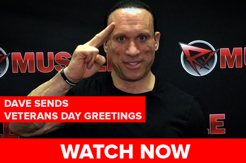 veterans day greetings from dave palumbo