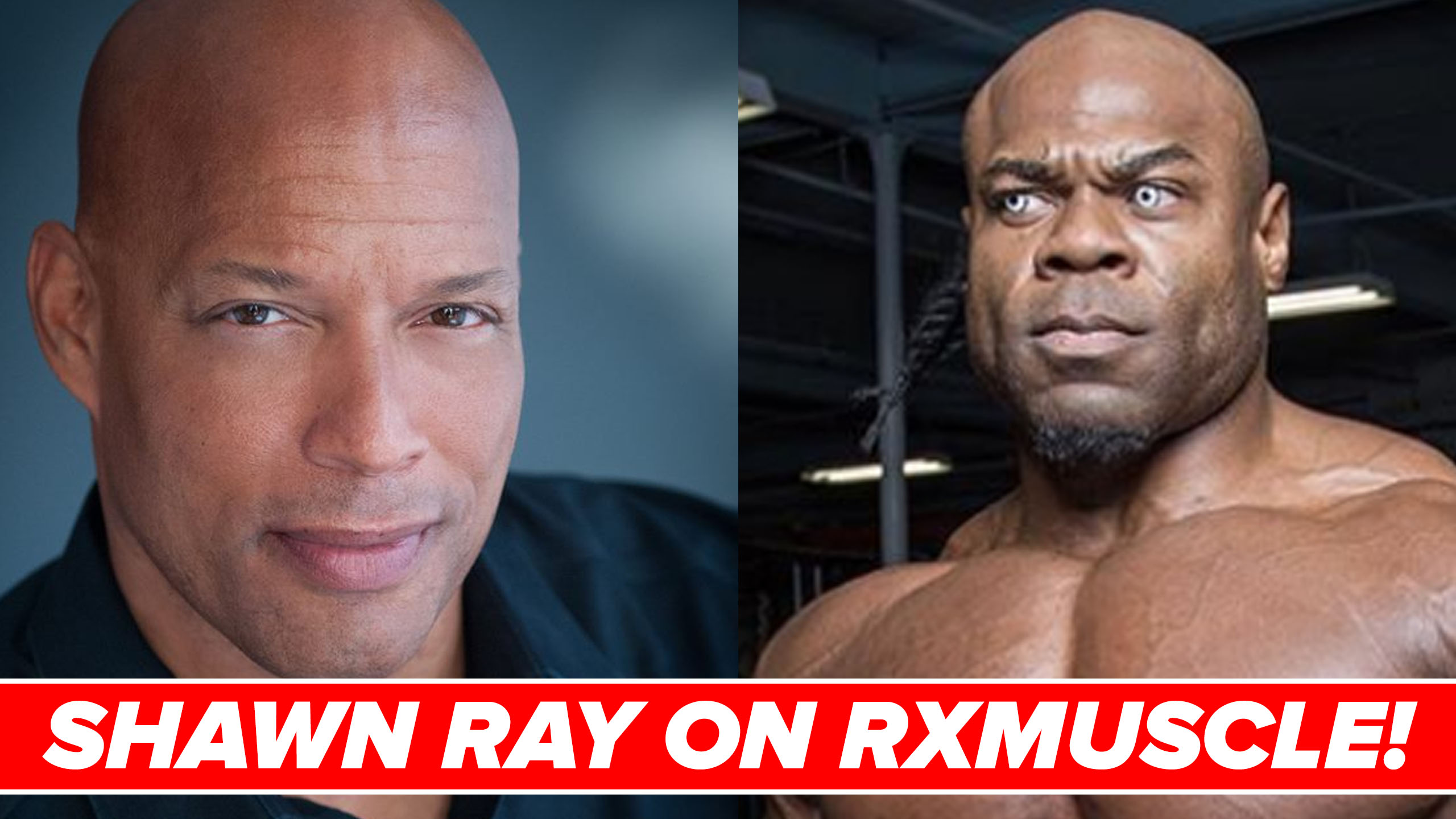 shawn ray interview rxmuscle