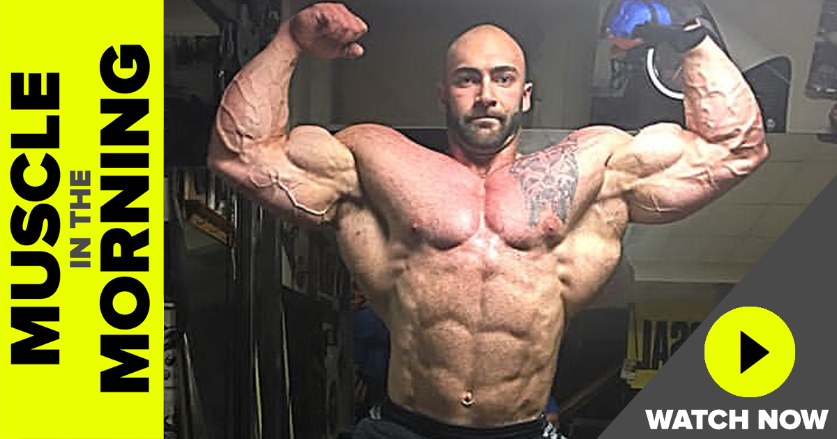 vincenzo masone muscle in the morning