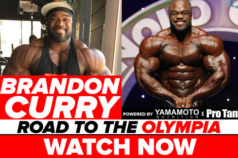 brandon curry interview pre olympia 2017