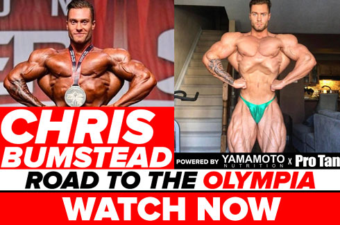 chris bumstead interview pre olympia 2017