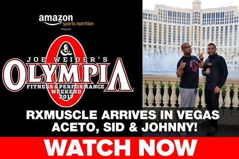 mr olympia preview1