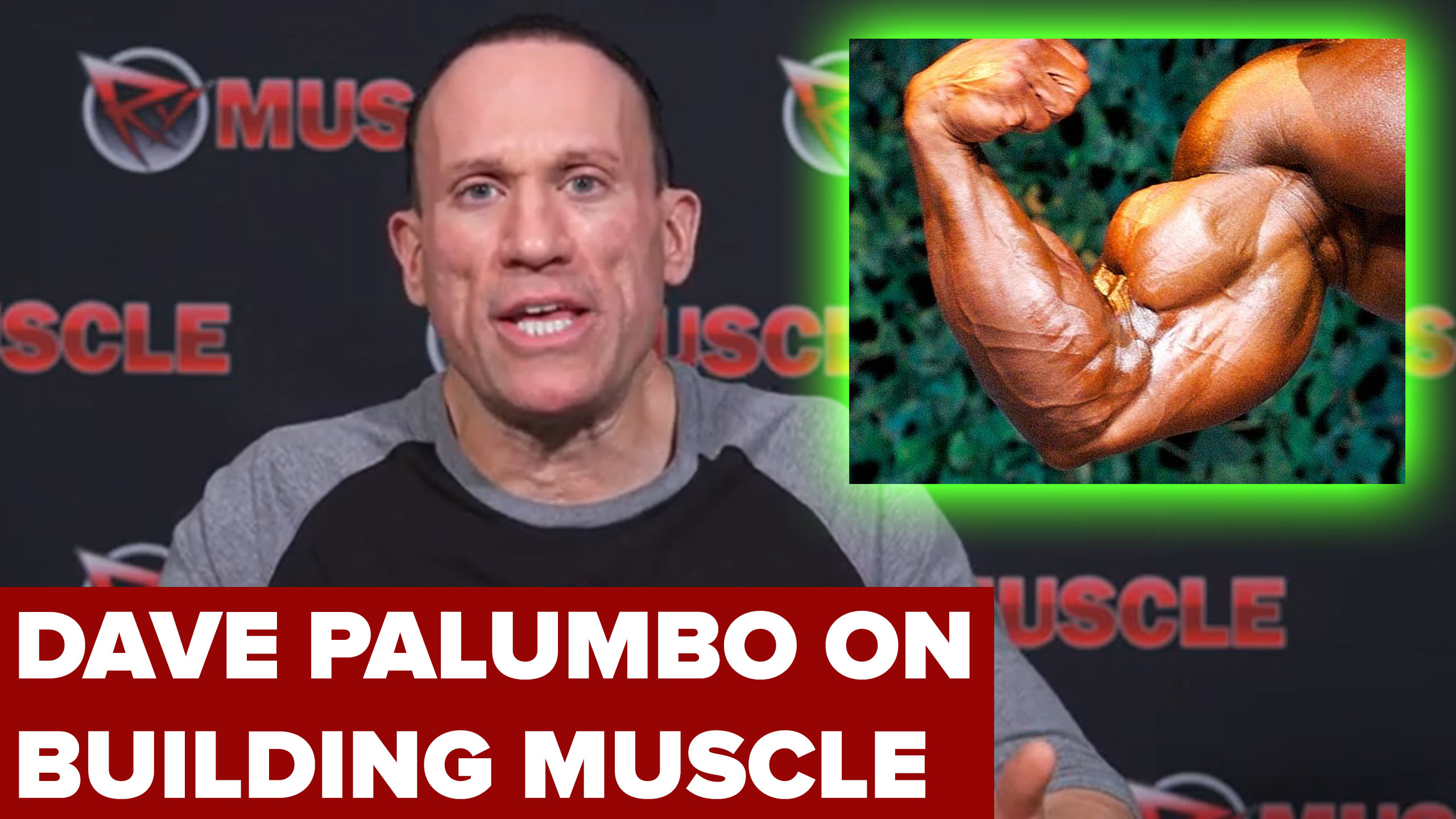 dave palumbo on building muscle