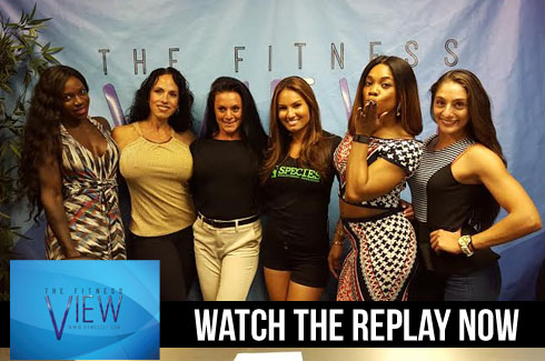 fitview replay
