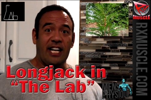 The Lab: Longjack, will this improve your testosterone level?